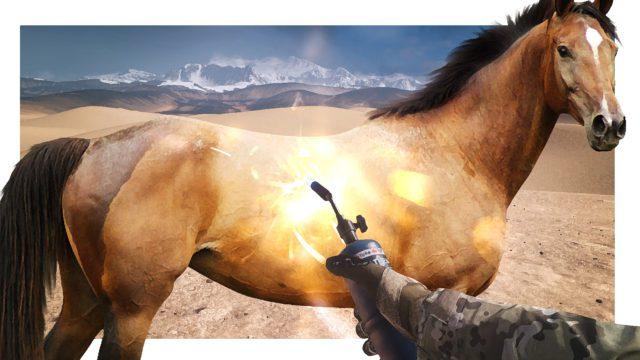 Pferde sind keine Fahrzeuge und verhalten sich auch nicht so!