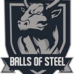 Der =Balls of Steel= Clan sucht neue Member (BF1 PC)